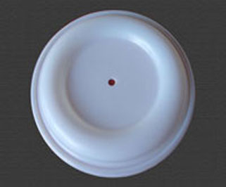 Teflon PTFE Diaphragm